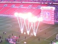 Palace celebrate.JPG